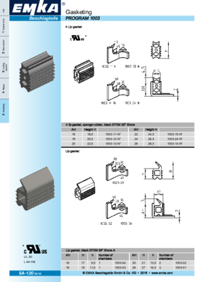 5A-120: Gasketing Program 1003